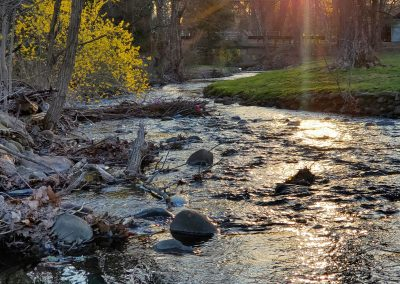 Stream and Sunset